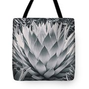 Mescal Agave Tote Bag