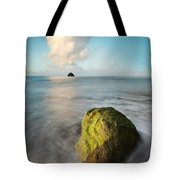 Metaphysics Tote Bag by Matteo Colombo