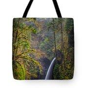 Metlako Falls Oregon Tote Bag