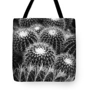 Mexican Golden Barrel Cacti Tote Bag