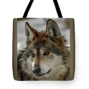 Mexican Grey Wolf Upclose Tote Bag
