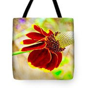 Mexican Hat Tote Bag