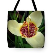 Mexican Shell Flower Tote Bag