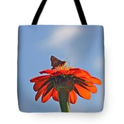 Mexican Sunflower Hat Dance Tote Bag