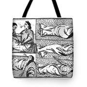 Mexico: Smallpox Epidemic Tote Bag