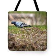 Michigan Rock Pigeon Tote Bag