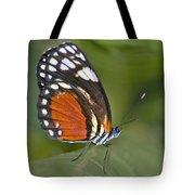 Micro Wings... Tote Bag