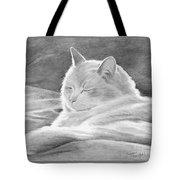 Mid-morning Meditation Tote Bag
