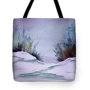 Midday Winter In Maine Tote Bag