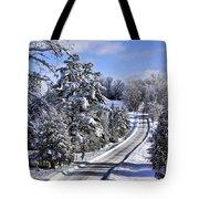 Middle Road Franklin Tote Bag