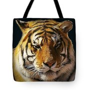 Midnight Catnap Tote Bag