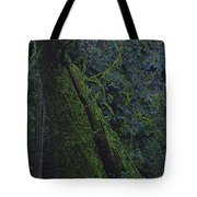 Midnight Tree By Jrr Tote Bag