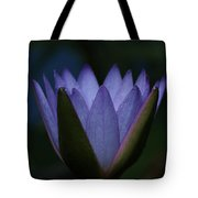 Midnight Water Lily Tote Bag