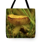 Midway Mountain Morsel 2 Tote Bag