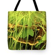 Midway Mountain Morsels 5 Tote Bag