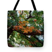 Mighty Fall Oak #1 Tote Bag