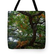 Mighty Fall Oak #2 Tote Bag