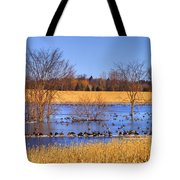 Migration.. Tote Bag