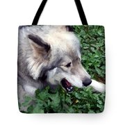 Miley The Husky With Blue And Brown Eyes - Impressionist Artistic Work Tote Bag