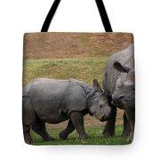 Mili And Sundari  Tote Bag by Steve LLamb