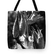 Milkweed #10 Tote Bag