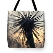 Beauty Of The Dandelion 1 Tote Bag