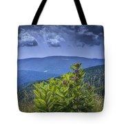 Milkweed Plants Along The Blue Ridge Parkway Tote Bag