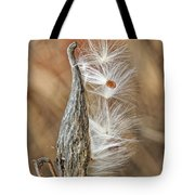 Milkweed Pod And Seeds Tote Bag