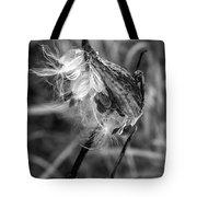 Milkweed Pod Monochrome Tote Bag