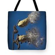Milkweed Pods On A Blue Background  Tote Bag