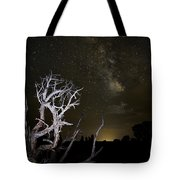 Milky Way Over Arches National Park Tote Bag