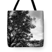 Mill Creek Marsh Afternoon Sun Tote Bag