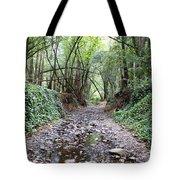 Miller Grove 2013 Horizontal Tote Bag