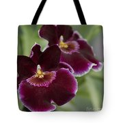 Miltoniopsis Rouge 'california Plum'  Macro  2692 Tote Bag