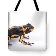Mimic Poison Dart Frog Tote Bag