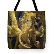Mimic Seahorse Tote Bag