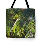 Mimosa At Sunset Tote Bag