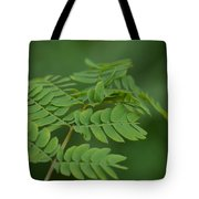 Mimosa Greens Tote Bag