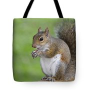 Mine Tote Bag by Carolyn Marshall