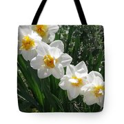 Miner's Wife Daffodils Tote Bag