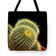 Mini Cactus In A Pot Tote Bag