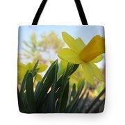 Mini Daffodils Tote Bag