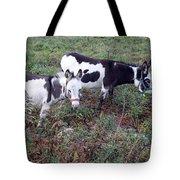 Mini Donkeys Tote Bag