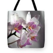 Mini Orchids 1 Tote Bag