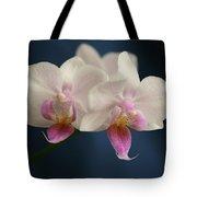 Mini Orchids 2 Tote Bag
