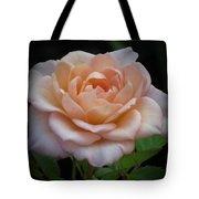 Mini Rose Tote Bag