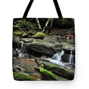 Mini Waterfalls Tote Bag by Kaye Menner