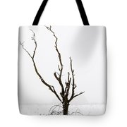 Minimal Tree Tote Bag