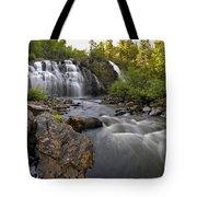 Mink Falls Tote Bag