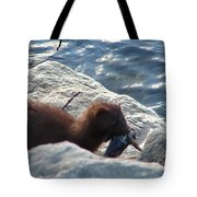 Mink With A Round Goby Tote Bag